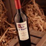 Domaine Borie de Maurel - Cuvée Maxime / 2008 / Red